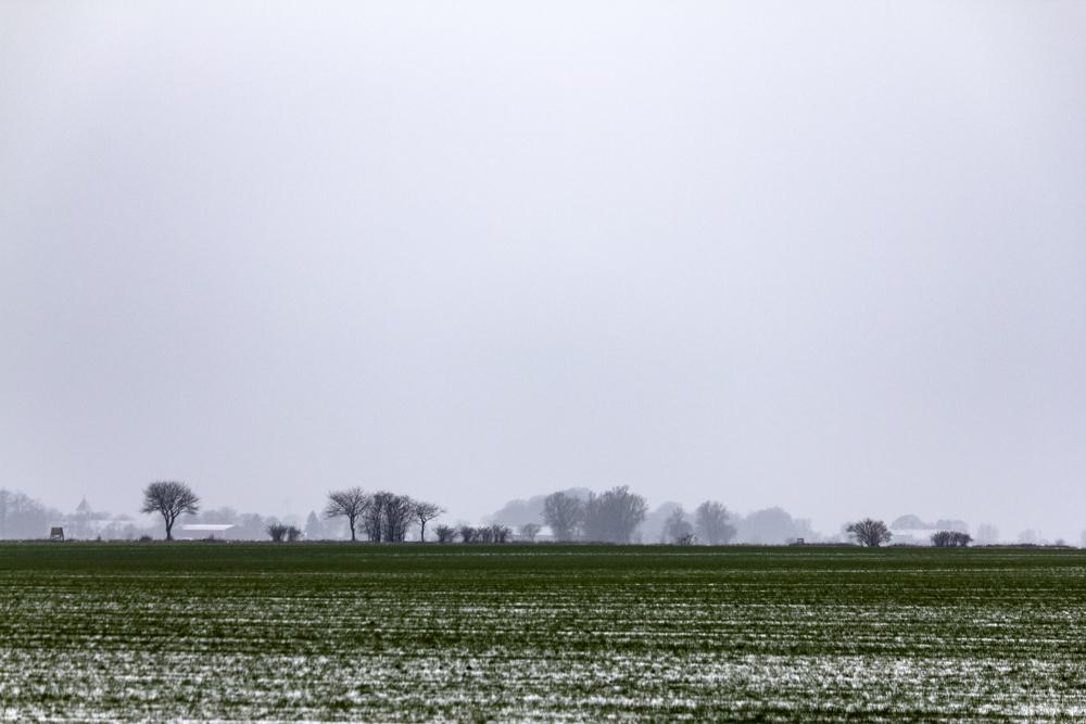 Vinterfält